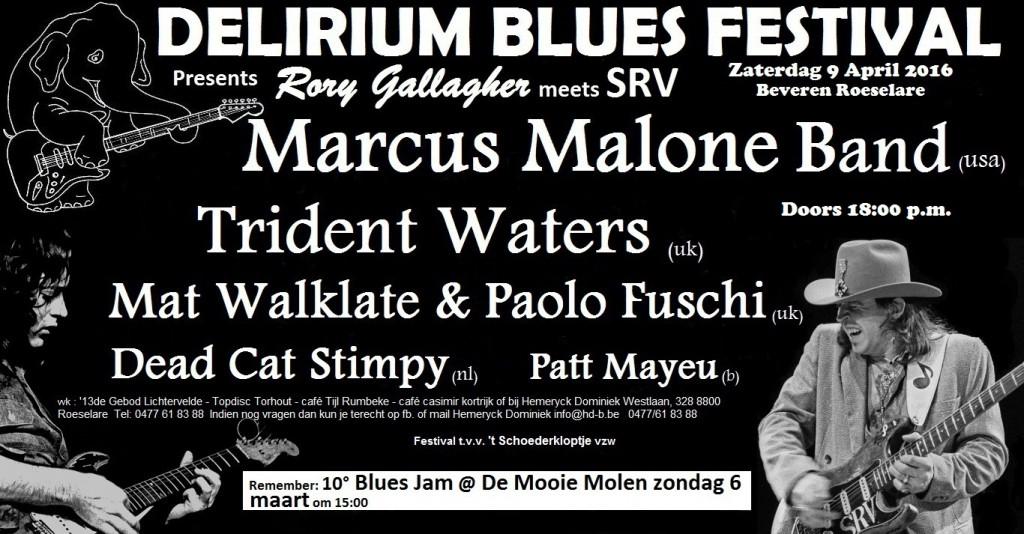Foto Delirium Blues Festival 2016